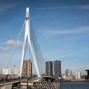 Rotterdam bedrijfsuitje